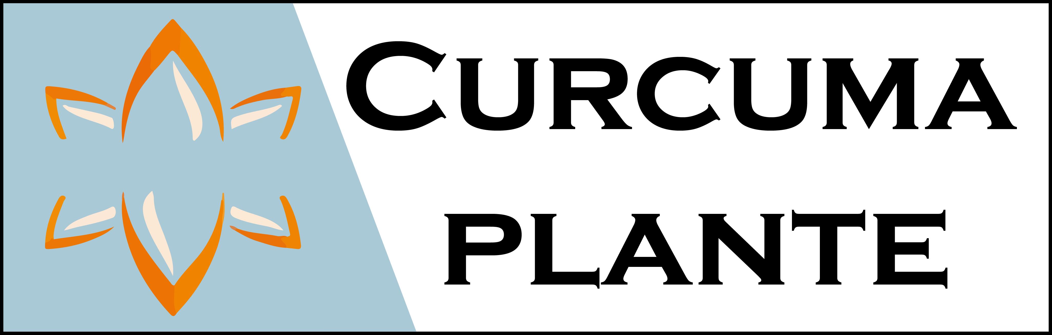 logo_curcuma_2